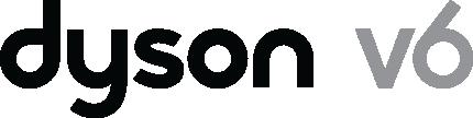 Dyson V6
