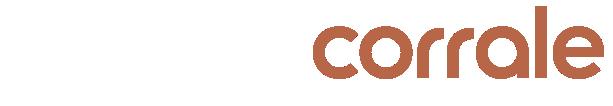 Logo de Dyson Corrale