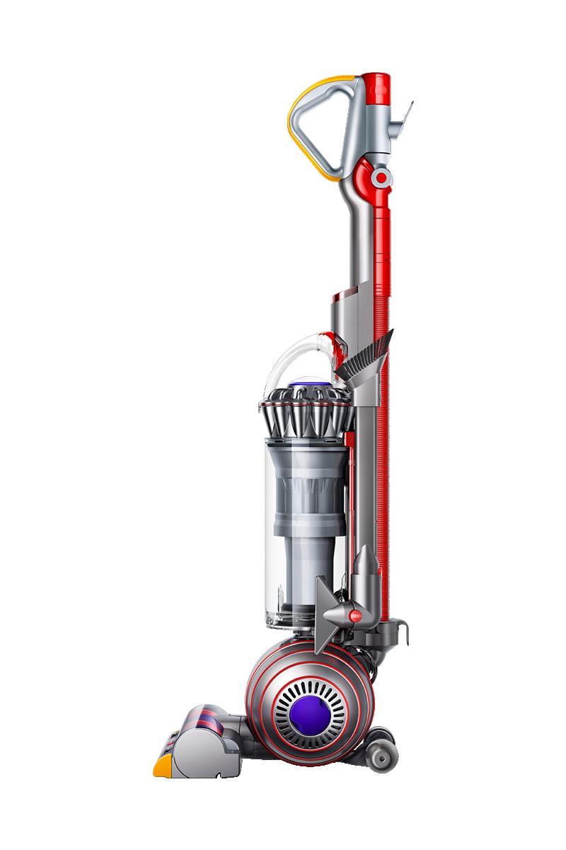 Image of Dyson Ball Animal 2 vacuum