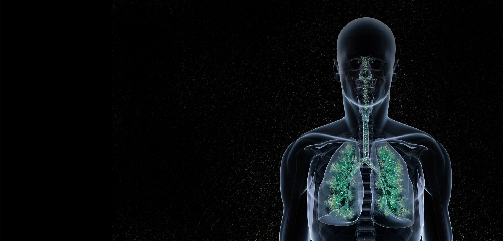 Lung Man
