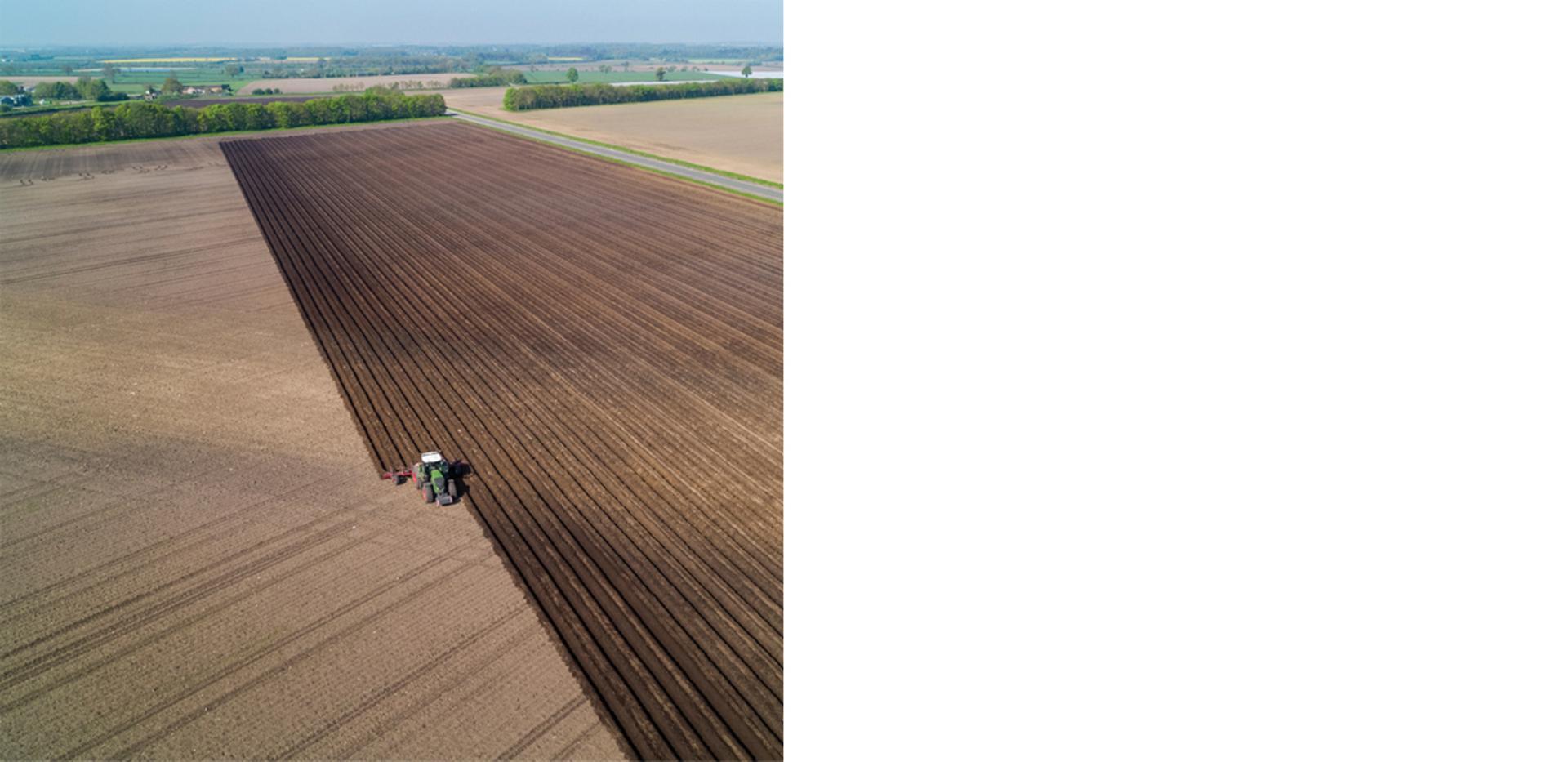 효율적인 농업