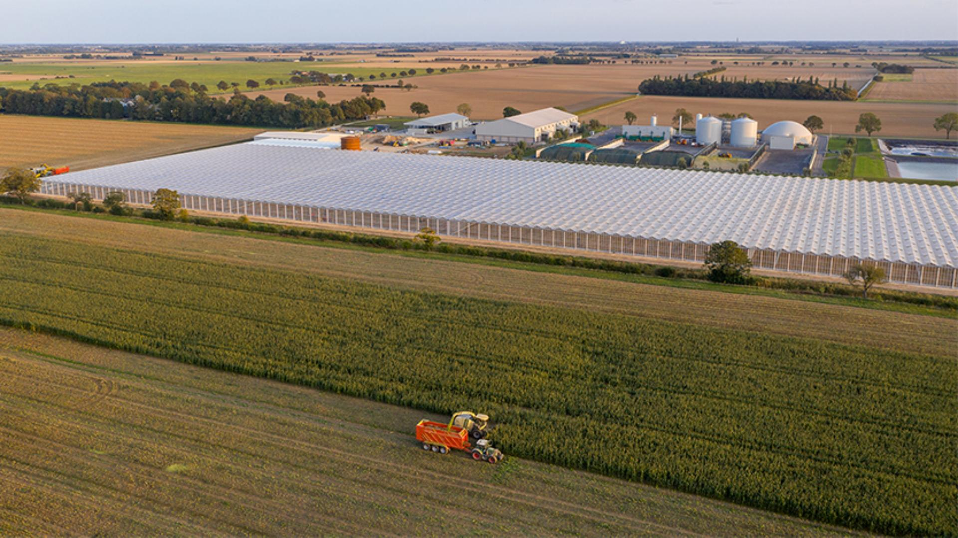 Aerial view of Dyson Farming greenhouses in Lincolnshire