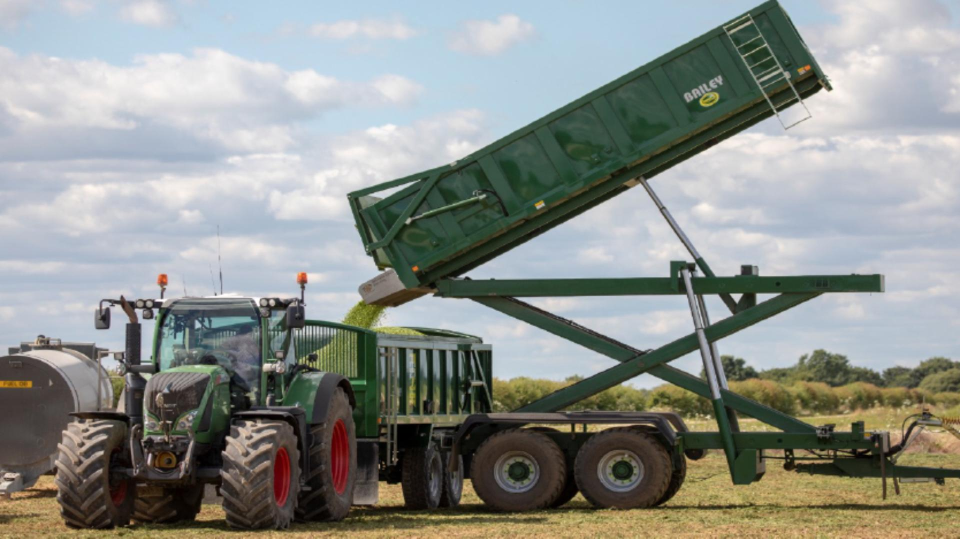 Pea harvest trailers being emptied into larger capacity trailers