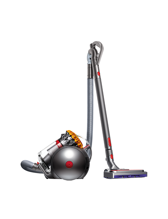 Dyson Big Ball Allergy 22