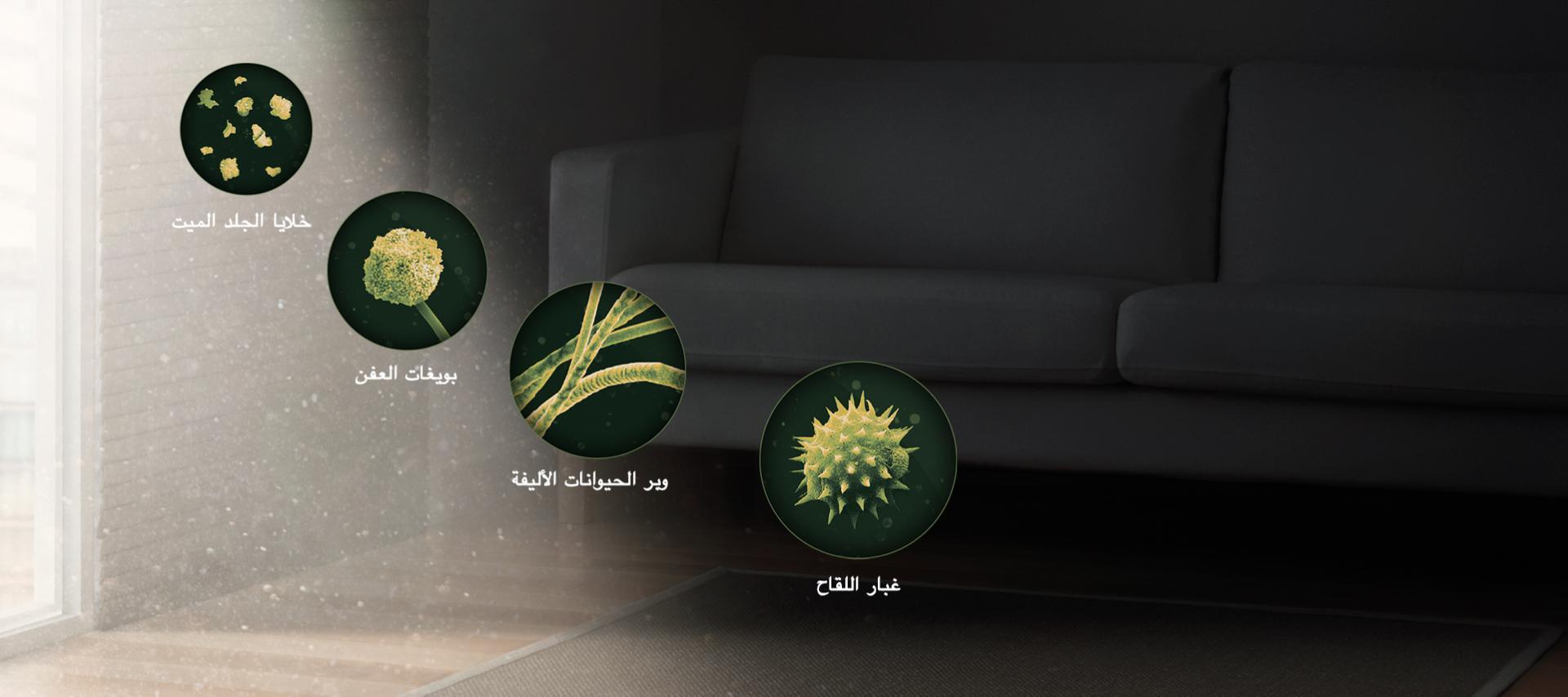 صور للبكتيريا/الملوثات والمواد المسببة للحساسية المختلفة المنتشرة في أرجاء المنزل