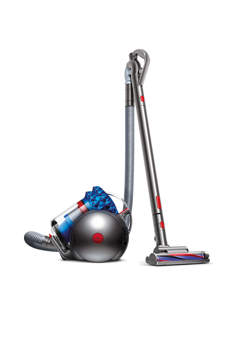 Dyson Cinetic™ Big Ball Animal+