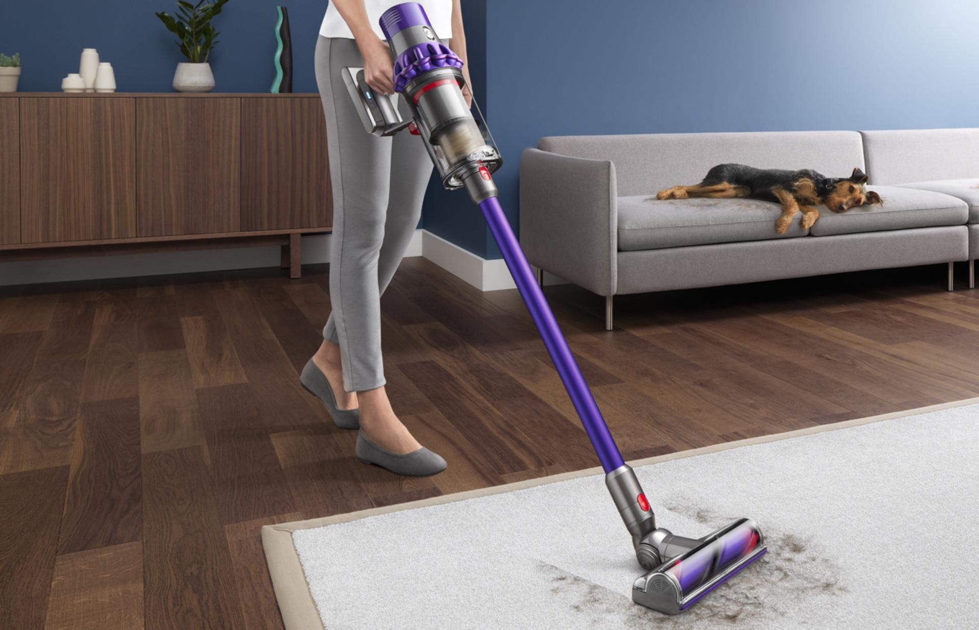 Dyson cyclone v10 picking up dog hair