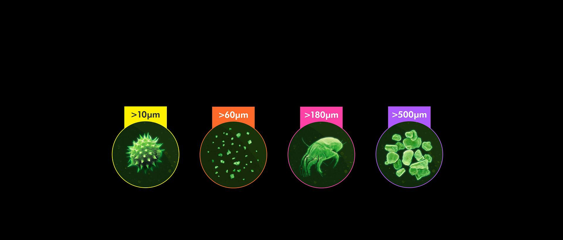 The four categories of particle counted by the vacuum