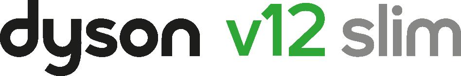 Dyson V12 Slim logo