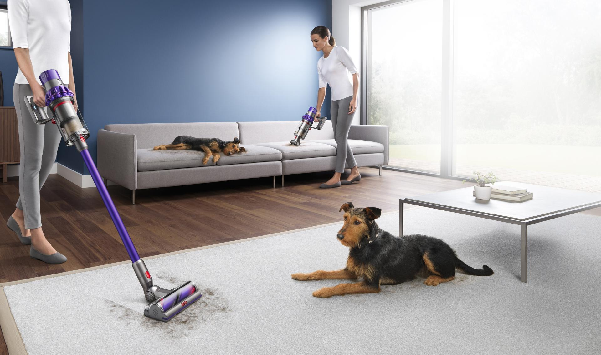 Dyson pet vacuum being used to clean up after a pet