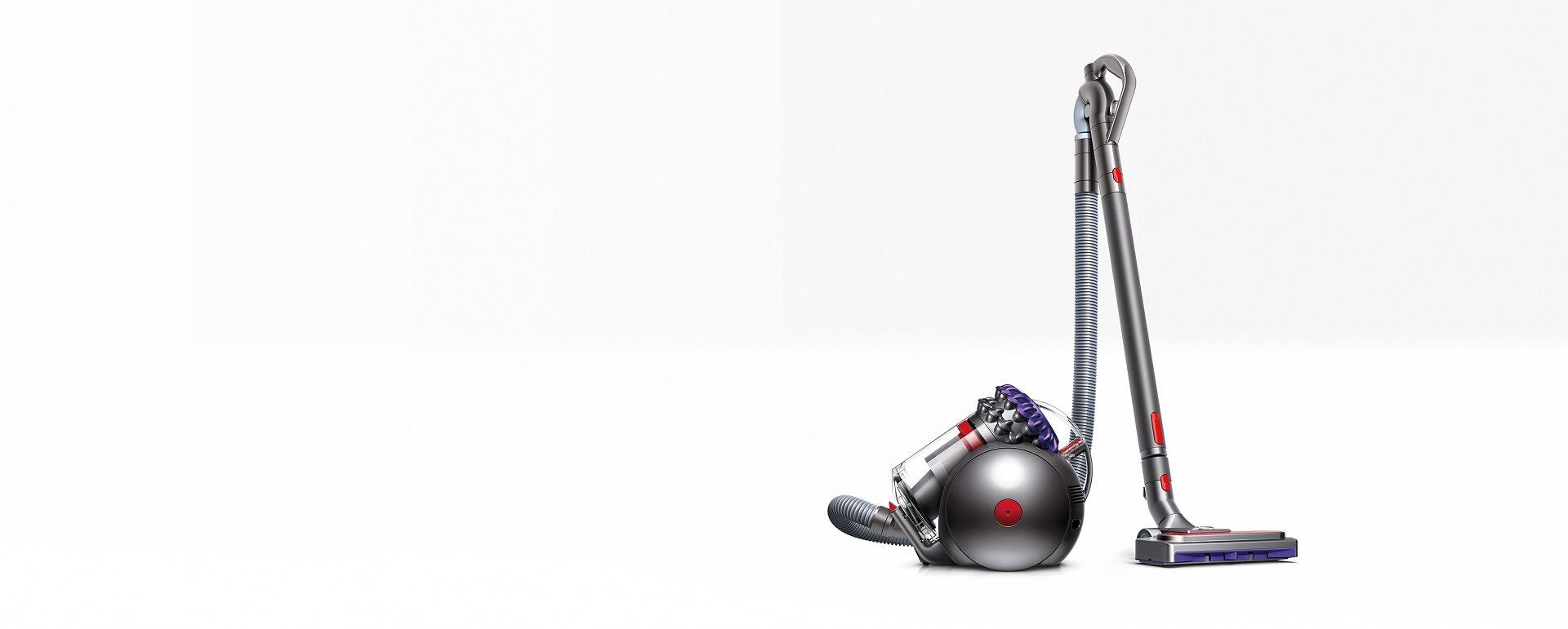 Dyson Big Ball Animal 2 vacuum