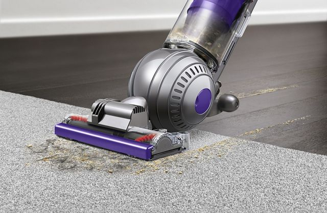 Vacuums For Pet Owners Dyson